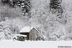 Tractor Shack Snow 010517 8959 4