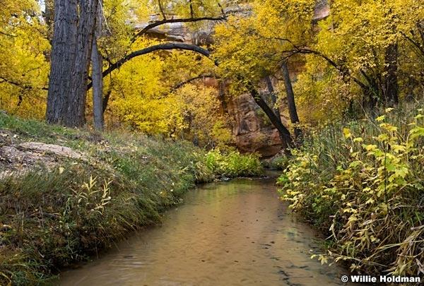 Calf Creek Autumn 101717 3431