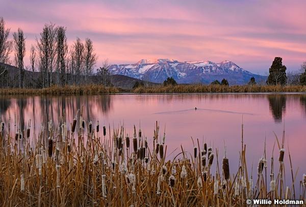 Timpanogos Ice Pond 111517 8538