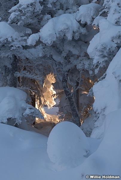 Fresh Snow Warm Window 111220 1377 5
