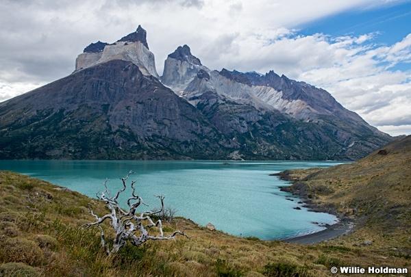 Torres Del Paine 031616 7951