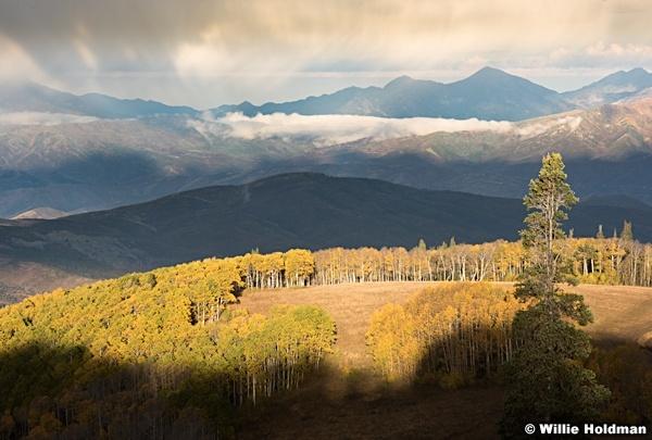 Wasatch-Mountains-Autumn-Aspens-100115-3649-3
