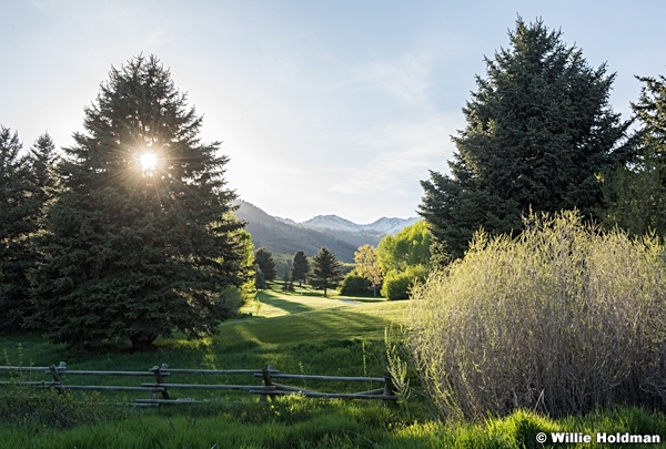 Wasatch State Park 051316 4204