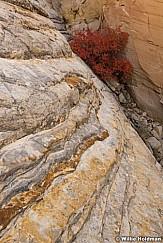 Boulder red 101817 4234 2