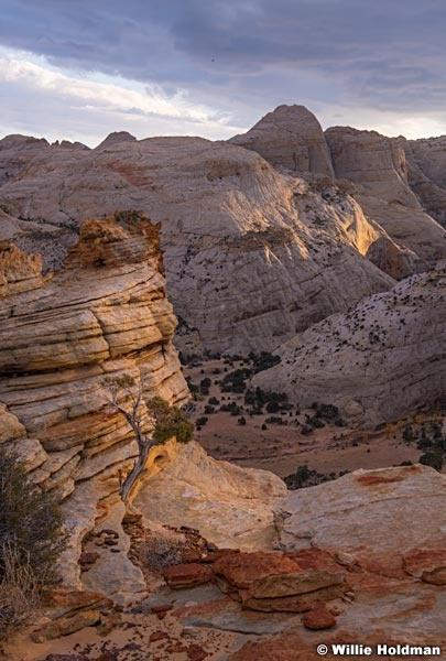 Sandstone Hills Reef 102719 3021