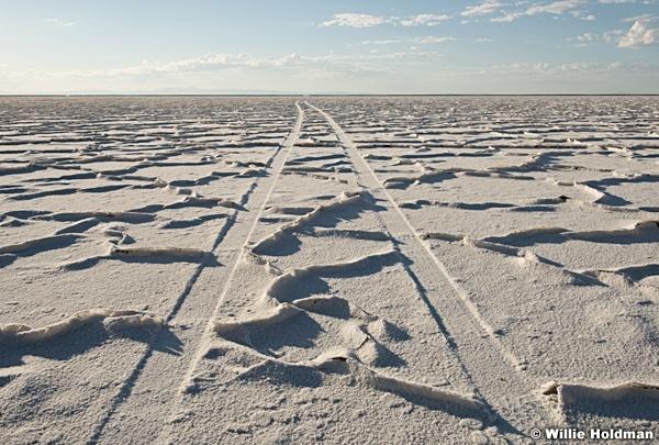 Salt Flats Ridge Lines car tracks 082517 4816