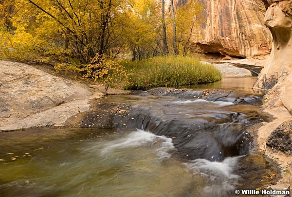 Calf Creek Stream 101817 4506 2