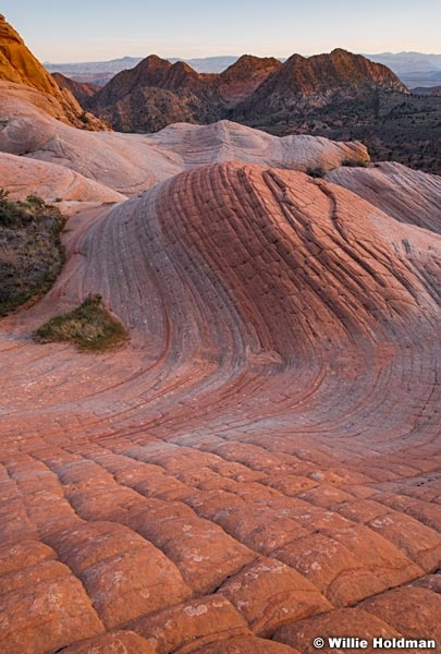 Sandstone Wave 041419 2932