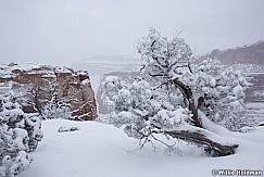 Canyonlands Snowfall 020116 1429