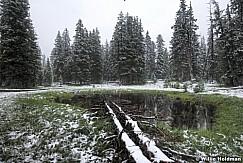 snowpinepond081609