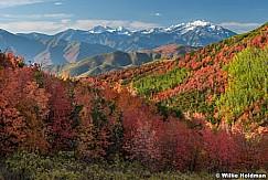 Cascade Rich Maples 092917 6268