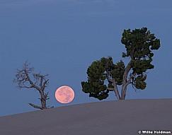 Two Tree Full Moon 082618 7694 2 3