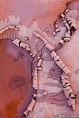 Cracked Mud 102012 456