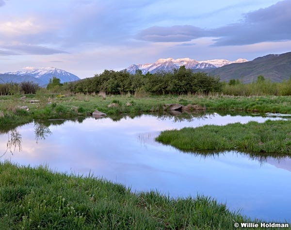Timpanogos Pond Reflection 051215