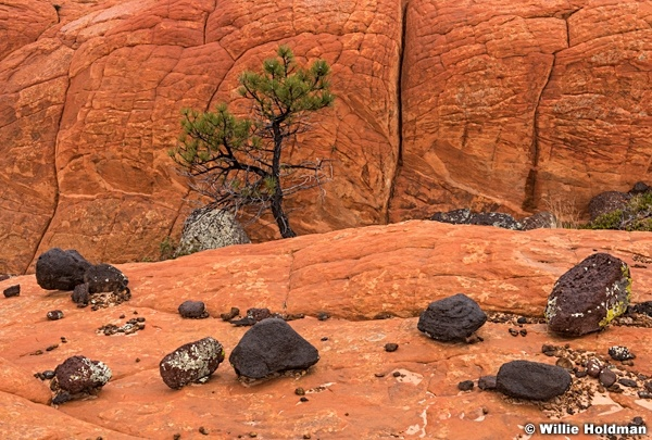 Lava boulders and red rock, Capital Reef Area, Southern Utah