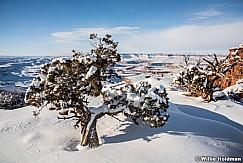 Canyonlands Winter 020216 1922
