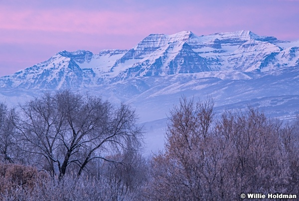 Timpanogos Purple Sunrise 010420 1291