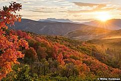 Autumn Leaves Heber 083016 7928 5