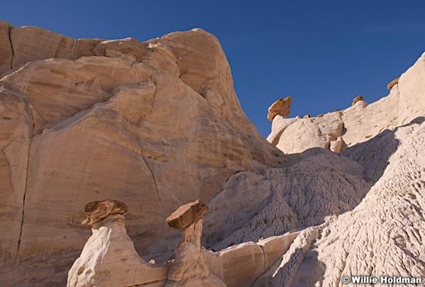 Rim Rocks 021415 8978