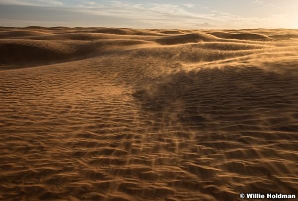 Sand Dune Wind Light 120317 9026 1 of 1 2