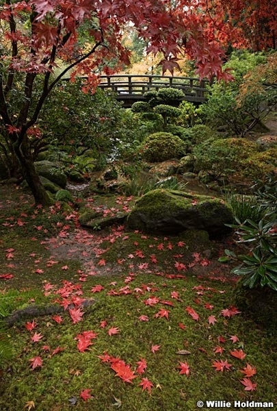 Japanese Garden 102716 7350