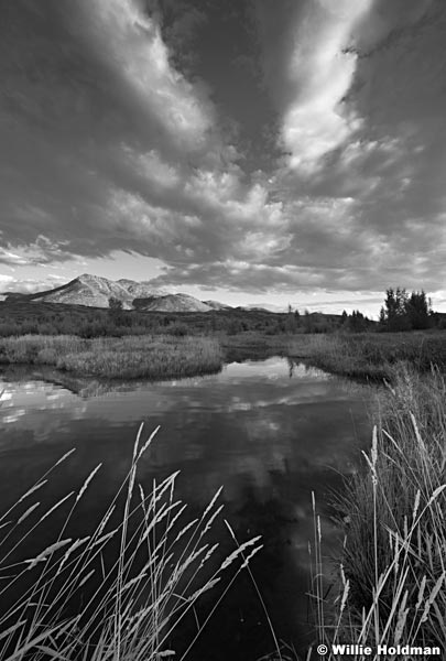 Pond Clouds Heber BW 083115 8313