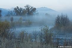 Provo River Misty summer 102215 8087 2