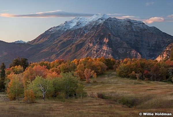 Autumn Colors Timp 100117 7131 7x5