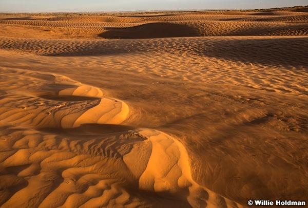 Sand Dune Wind Light 120317 9071