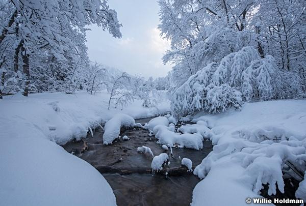 South Fork Winter Strream 010517 9191 6