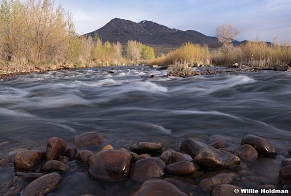 Spring Greens Provo River 05081 8184