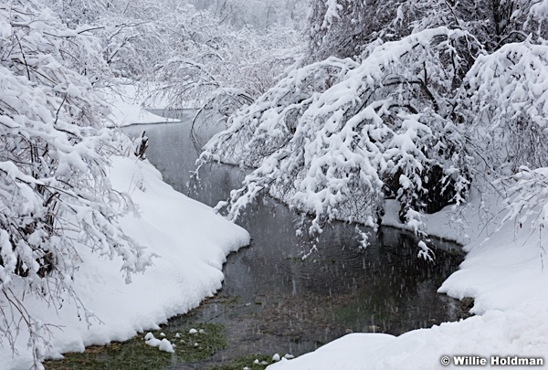 South Fork Winter Stream 122115 2
