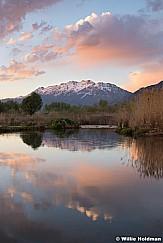 Hobble Creek Timp Reflection Vert 043020 1185a