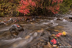 North Fork Stream 100818 9154 3