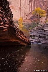 Mill Creek 102112 3792