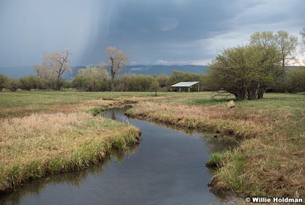 Storm Stream Pasture 050320 1535 3