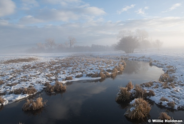 Soft Winters Morn 122120 6324 3