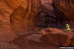 Escalante Slot Canyon 06516 1156