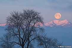 Frosty Twin Peaks 123020 7192 2