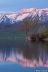 Timp Deer Creek 042216 1137