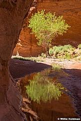 Escalante Choprock Canyon 060516 1325