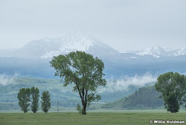 Grand Teton River Rock 061620 6680 2