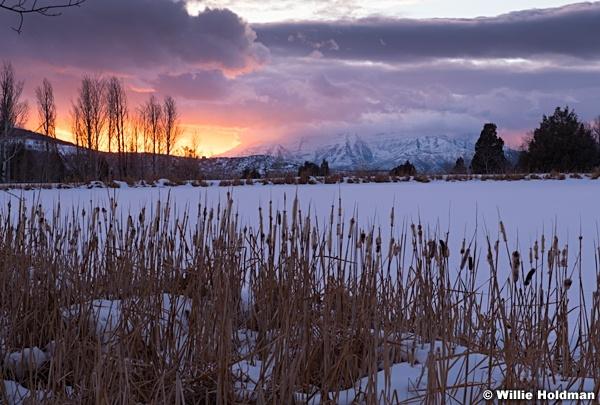 Timpanogos Cattails Sunset 122118 0446 5 2