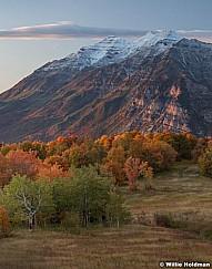 Autumn Colors Timp 100117 71316x7