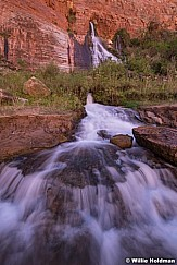 Vaseys Paridise Grand Canyon 041719 3682