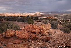 Desert Bighorn Sheep Capitol Reef 102719 2