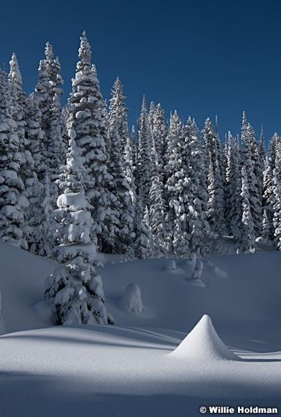 Fresh Snow Grizzly Gulch 111220 1690 3