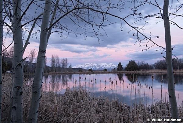 Timpanogos Pink Sunrise Reflection 042820 0354 0354