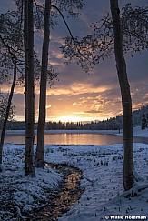 Golden Stream Pond 060720 9275 2