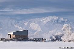 Charleston Hay Barn Winter 022419 8305